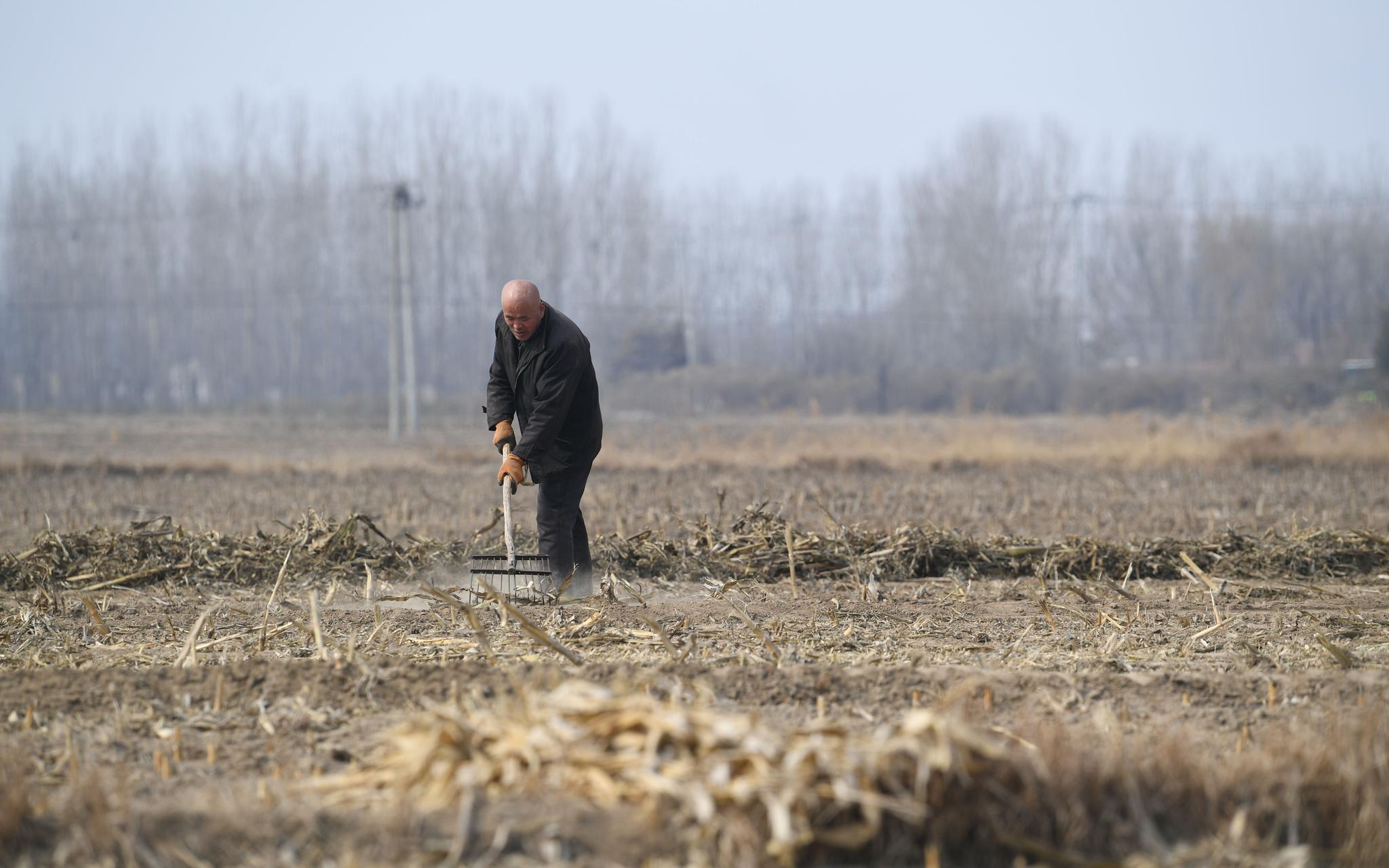蓝冠:理地蓝冠备耕京郊农民忙起来图片