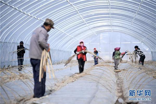 海外网评:如期实现脱贫目标,中国为什么能?图片