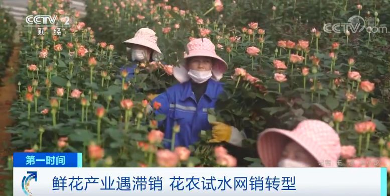 http://www.nanke0579.com/shishangchaoliu/42243.html