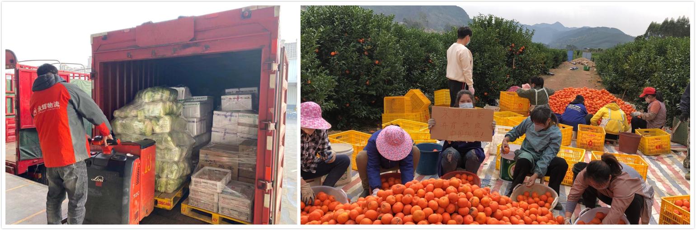 """永辉超市""""助农计划""""上线半月,助销农产品上百吨图片"""