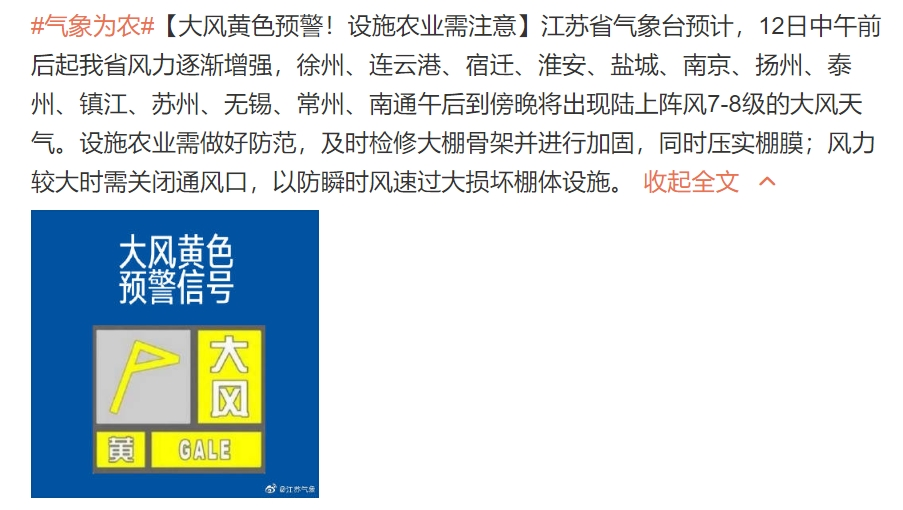 江苏发布大风黄色预警 午后到傍晚将出现7到8级大风图片