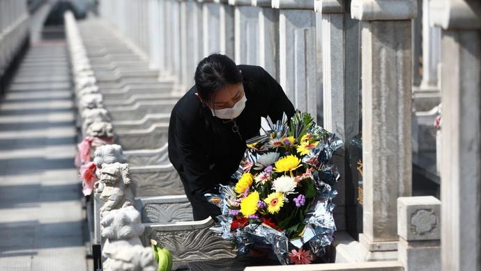 上海清明祭扫高峰期现场祭扫市民96.85万人,同比去年减少85%图片