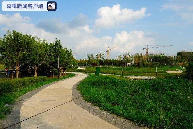 黑龙江:即日起哈尔滨开放式公园严禁集体歌舞、宠物禁入图片