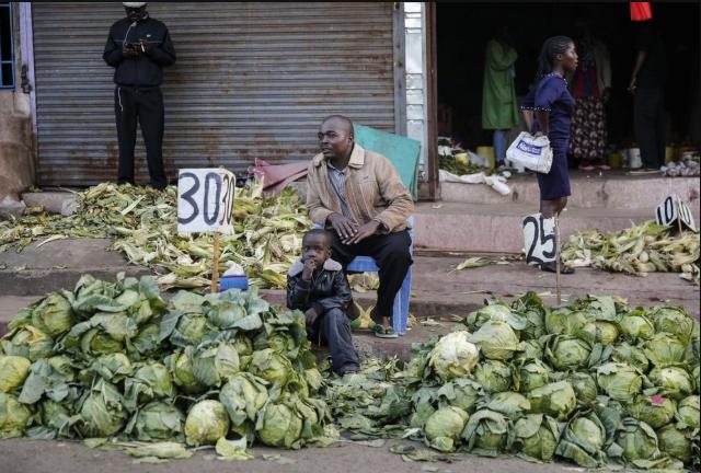 「蓝冠」灾加之疫情蔓延非洲面临粮食供应经济发蓝冠图片