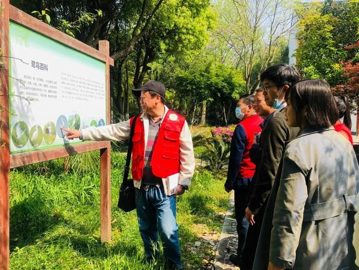 秀洲:爱鸟护鸟共建好生态图片