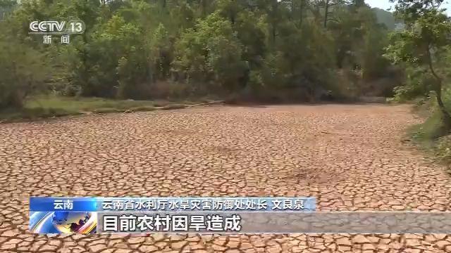 云南遭遇严重旱情 超过147万人饮水困难图片