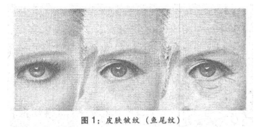 杏鑫:可流逝美人不迟杏鑫暮——中医图片
