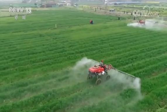 【摩天注册】北加摩天注册强疫情防控保障农业生产图片