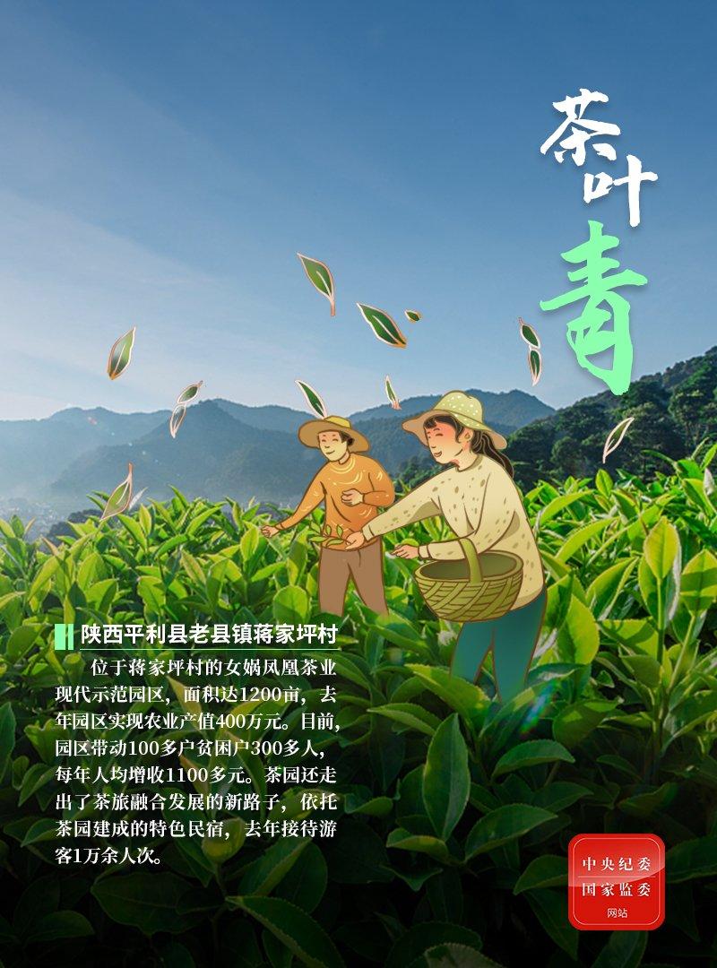 [摩天代理]海报|木耳黑苹果红茶叶青……热摩天代理图片