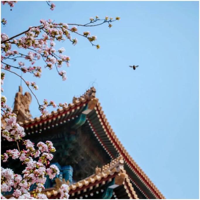 http://www.bjgjt.com/tiyuhuodong/140641.html