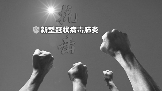 大年夜,这位全国人大代表为啥要留守上海抗疫?关系到救援捐赠资金是否到位图片