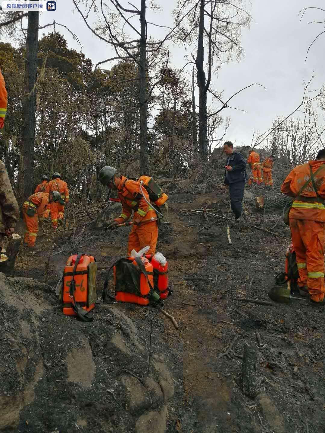 四川甘孜州九龙县森林火灾火势得到有效控制图片