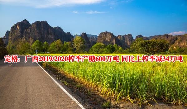 定格:广西2019/2020榨季产糖600万吨 同比上榨季减产34万吨