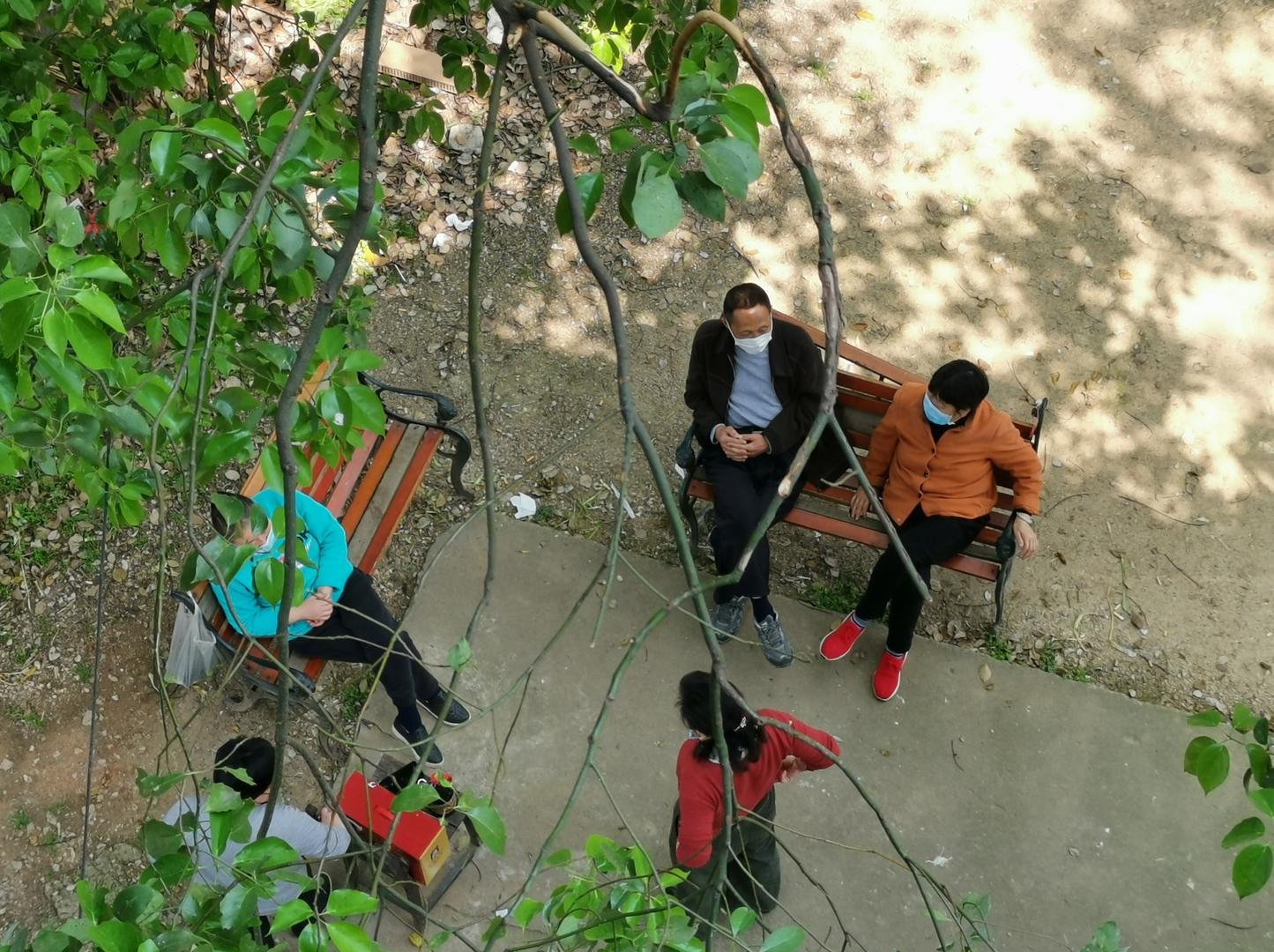 ▲2020年4月9日,湖北武汉,春景妖冶,几位市民走下住民楼,坐在香樟树下的长椅上谈天。图据ICphoto