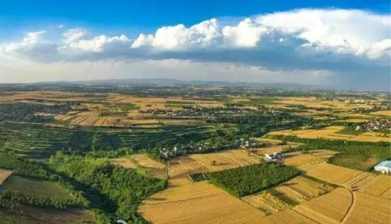 每日一淘联合《乡土》栏目与腾讯新闻发起助农直播,共同推介秦川大地优质农产品