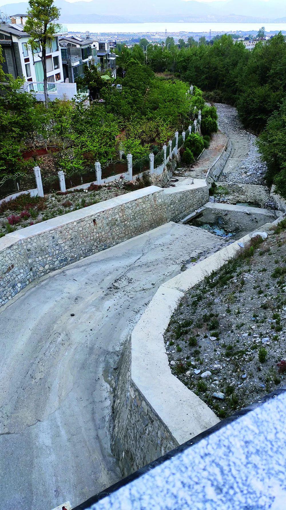 水泥硬化完成后的黑龙溪。图/受访者提供
