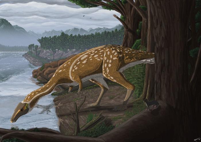 澳大利亚古生物学家发现了长颈无齿的霸王龙表亲