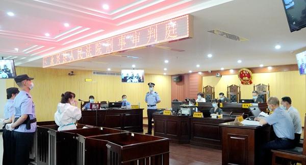 永兴县柏林镇原党委书记王丽萍贪污挪用公款案一审开庭