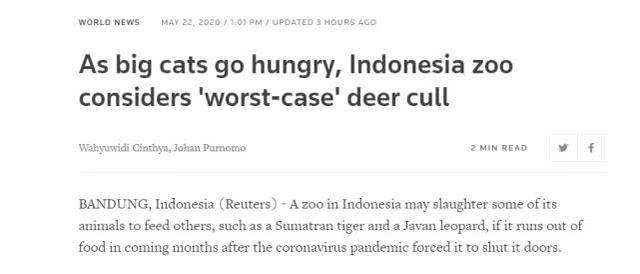 因疫情食物将耗尽,印尼动物园或扑杀老弱动物喂虎豹
