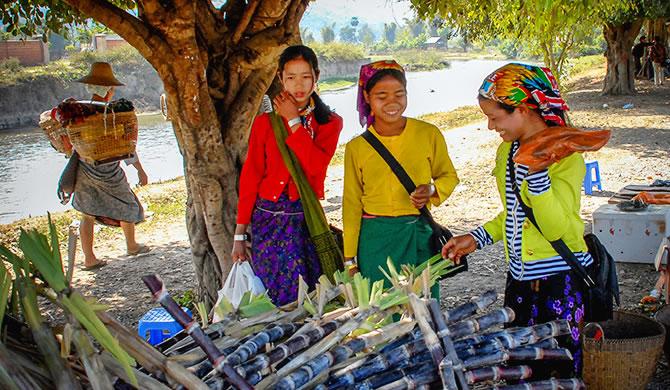 由于疫情有关限制 缅甸食糖市场价格低迷