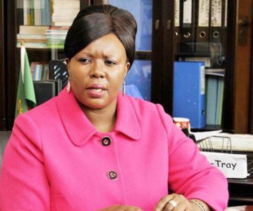 赞比亚信息与广播部长新冠病毒检测呈阳性