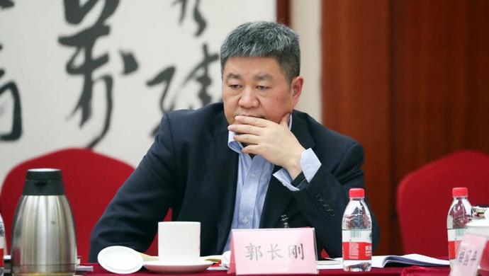 郭长刚委员:后疫情时代,应进一步强化我国国际话语权图片
