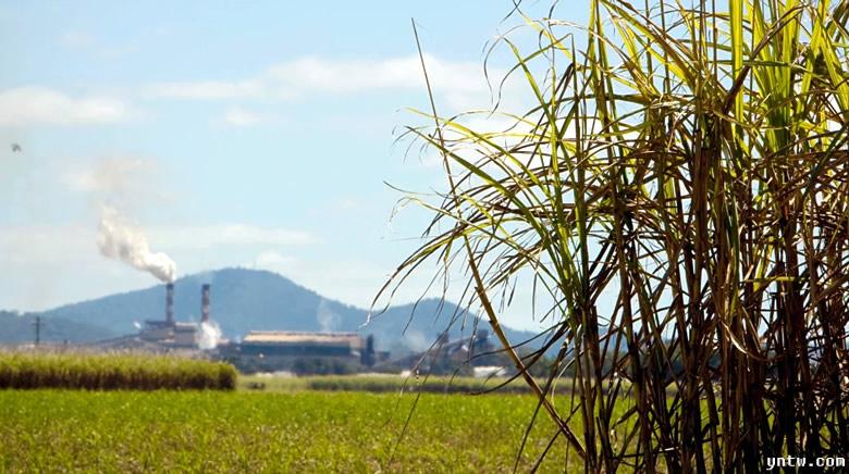 澳大利亚:中国停止食糖贸易保障措施给澳大利亚糖业提供机会