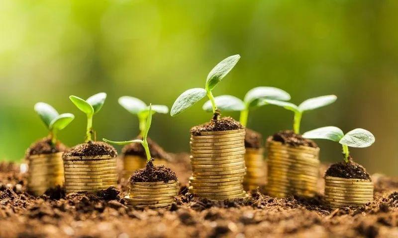 【集论】促进绿色金融发展的机制研究合集