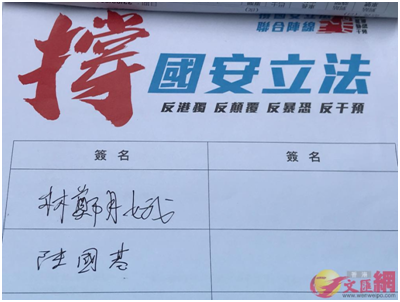 """林郑月娥到街站署名支撑国安立法。泉源:香港""""文汇网"""""""
