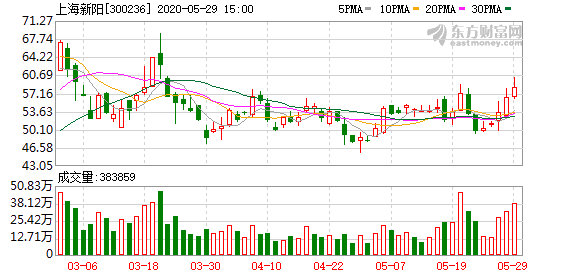 上海新阳:2995.89万元转让上海新昇1.5%股权
