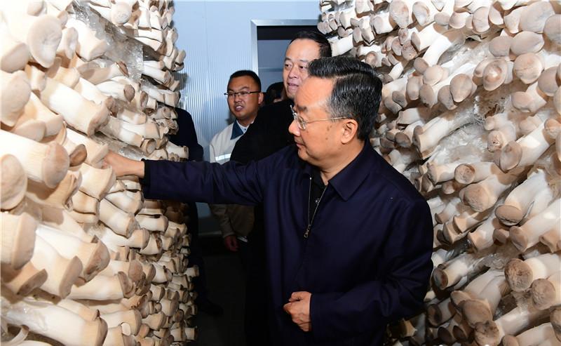 [天富]在临洮县调研指导脱贫攻坚天富工作图片