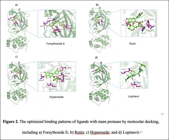 论文中芦丁、连翘脂苷E、金丝桃苷与洛匹那韦的比较截图