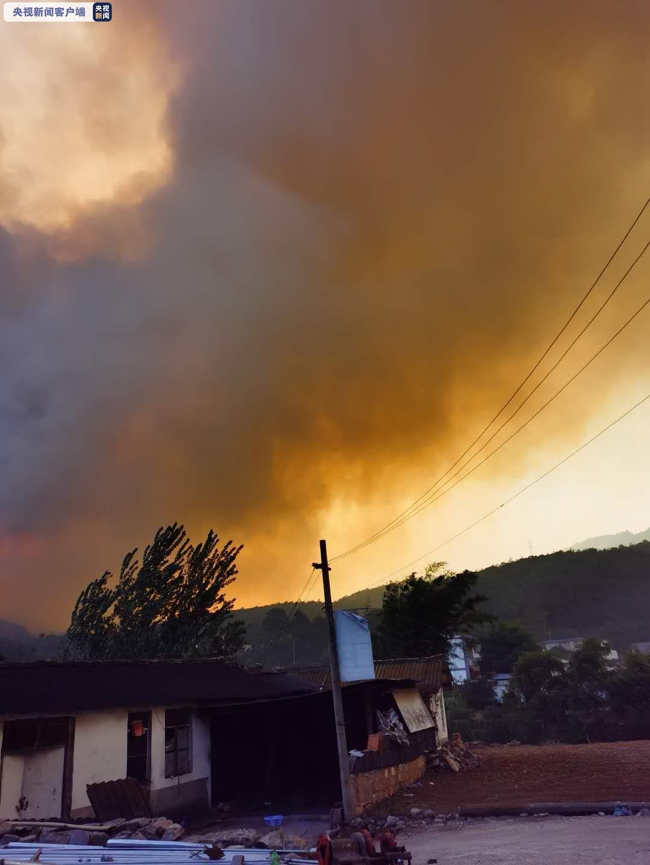 云南安宁发生森林大火 现场火势较大图片