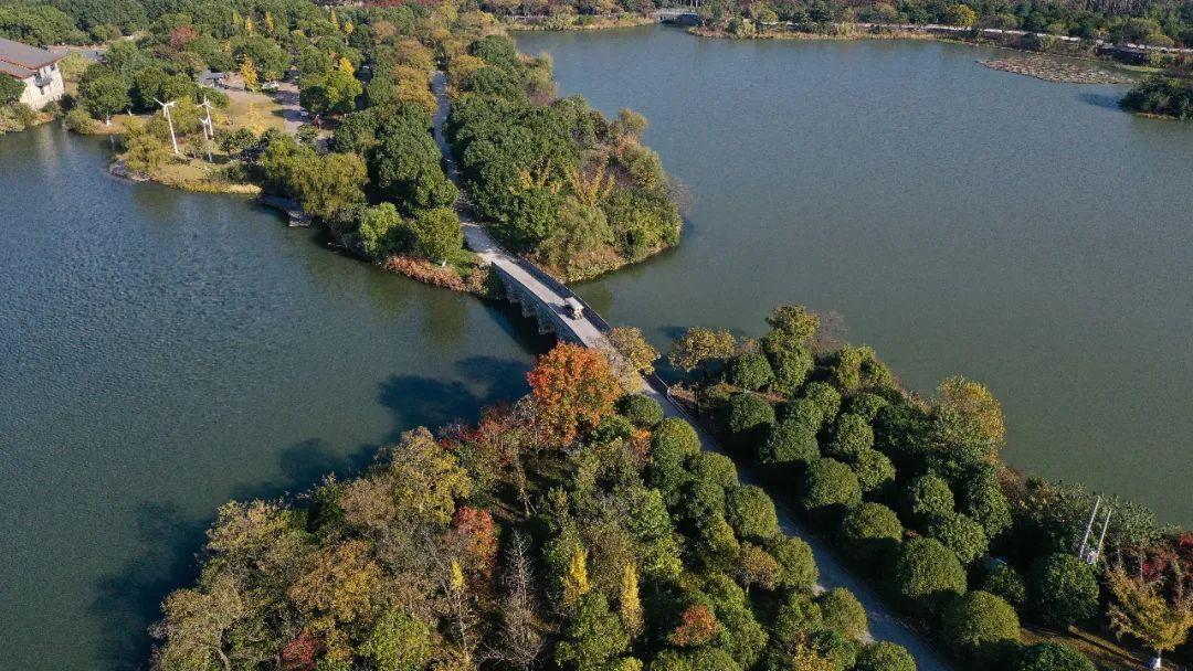 江苏昆山花桥经济开辟区辖区内的天福国度湿地公园。新华社记者季春鹏摄