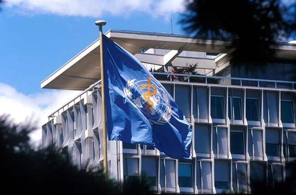 世界卫生组织大楼。(来源:网络)