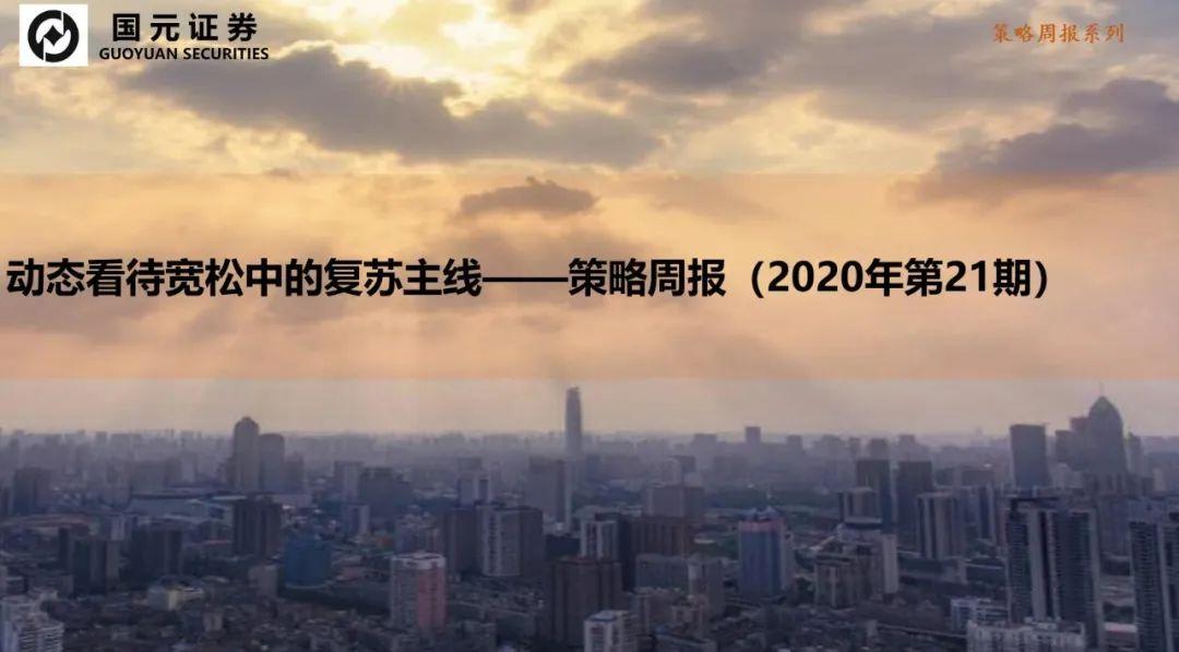【国元策略】动态看待宽松中的复苏主线(2020年第21期,虞坷)