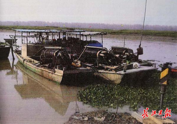 摩鑫官网这样捕捞要不得不法商贩用吸摩鑫官网螺机图片