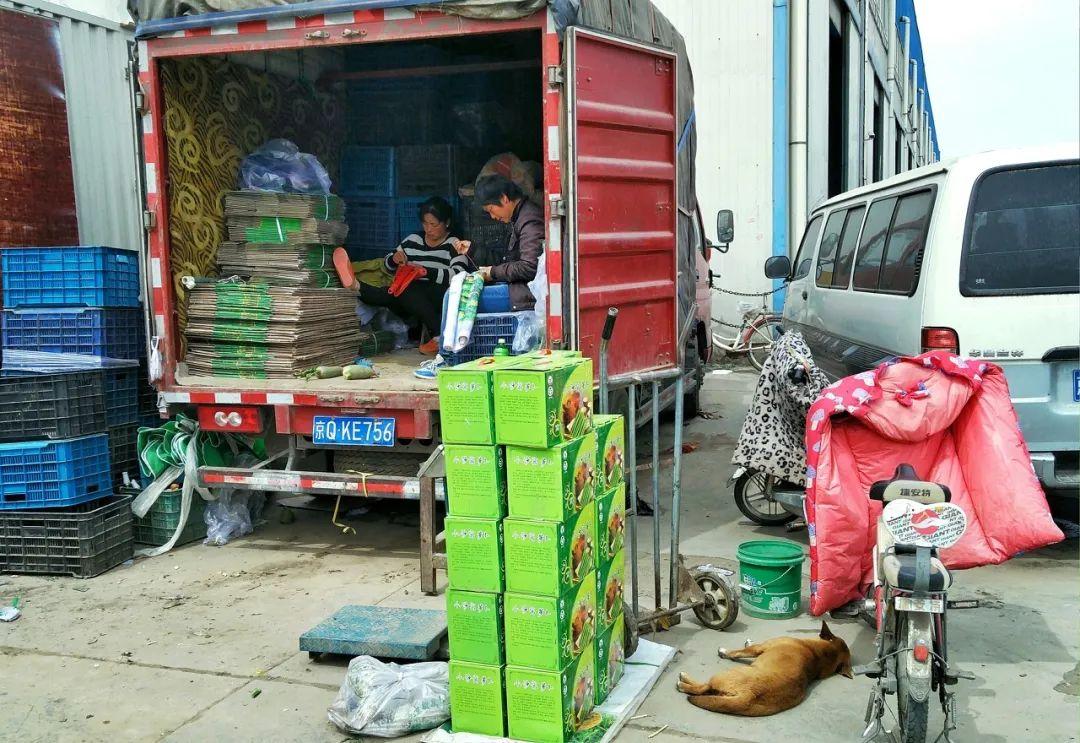 摩天登录:失惨重北京新发地的商摩天登录户还好图片