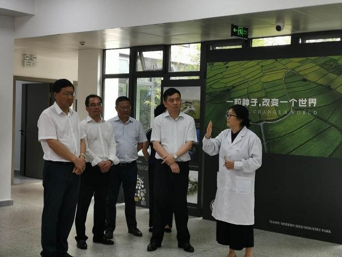 尧斯丹赴邛崃市调研天府现代种业园区建设图片