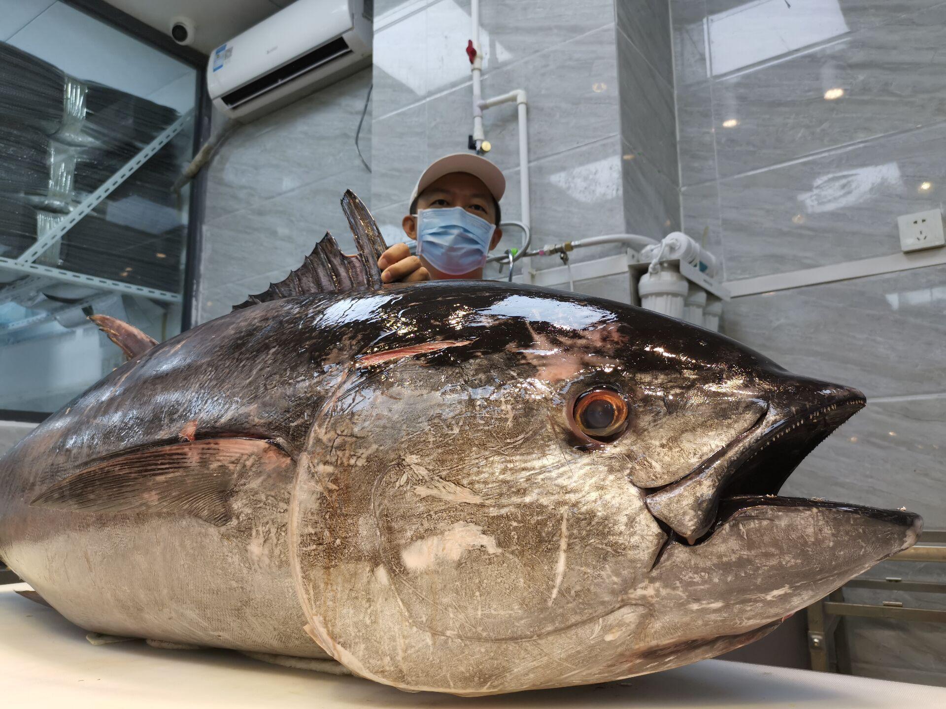 海鲜生鱼片遭受重创:冷冻到冷冻将使价格下降70%