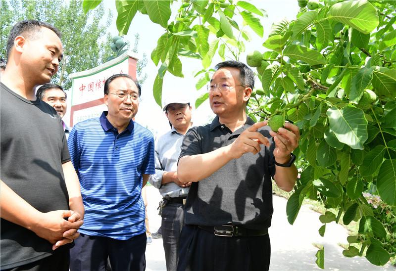 唐仁健在成县调研指导脱贫攻坚工作图片