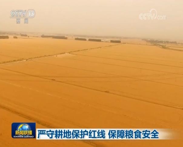 摩天代理:严守耕地保护红摩天代理线保障粮食安全图片