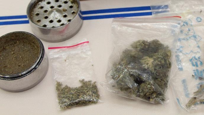 摩天娱乐暗藏辐射全国摩天娱乐的大麻制售网络缉毒图片