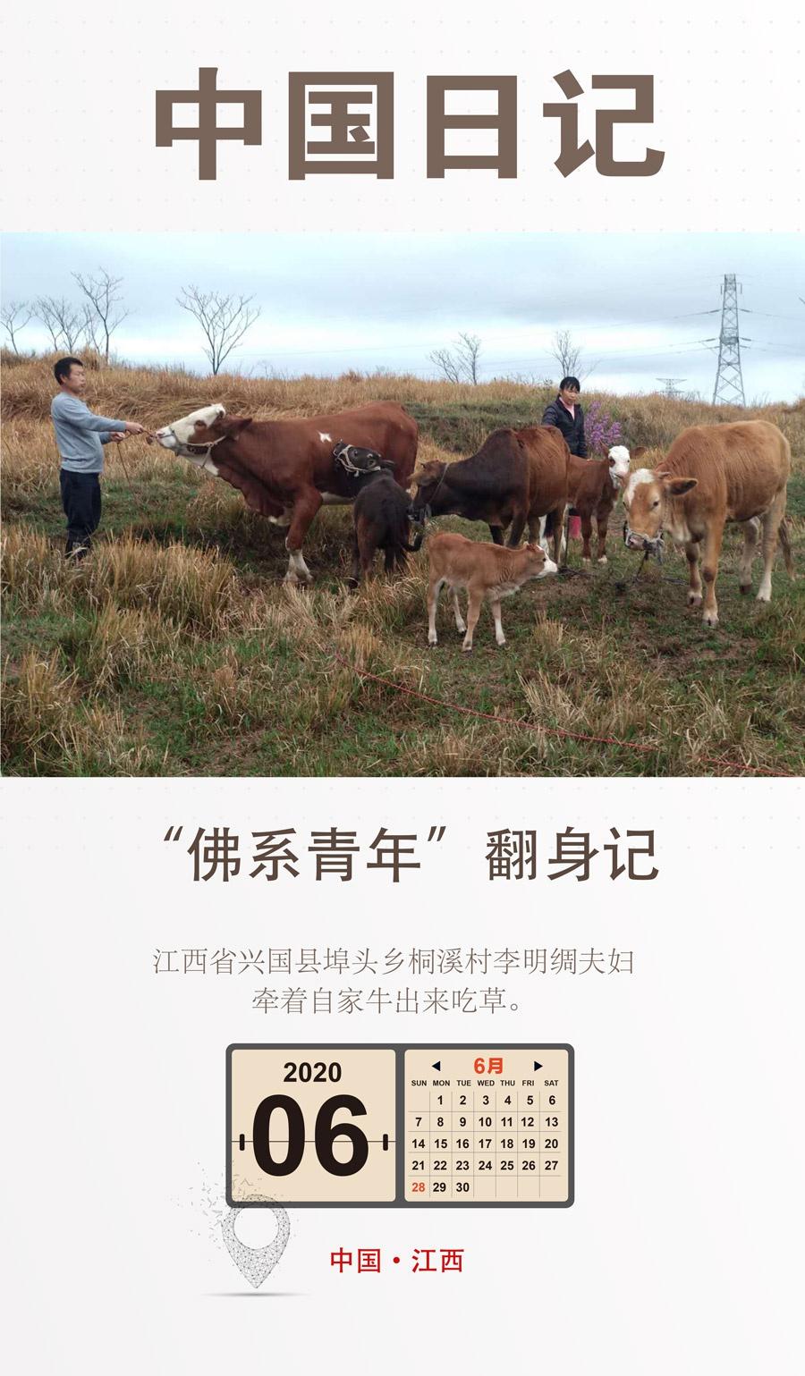 【天富】中国天富日记6月28日|佛系青年图片