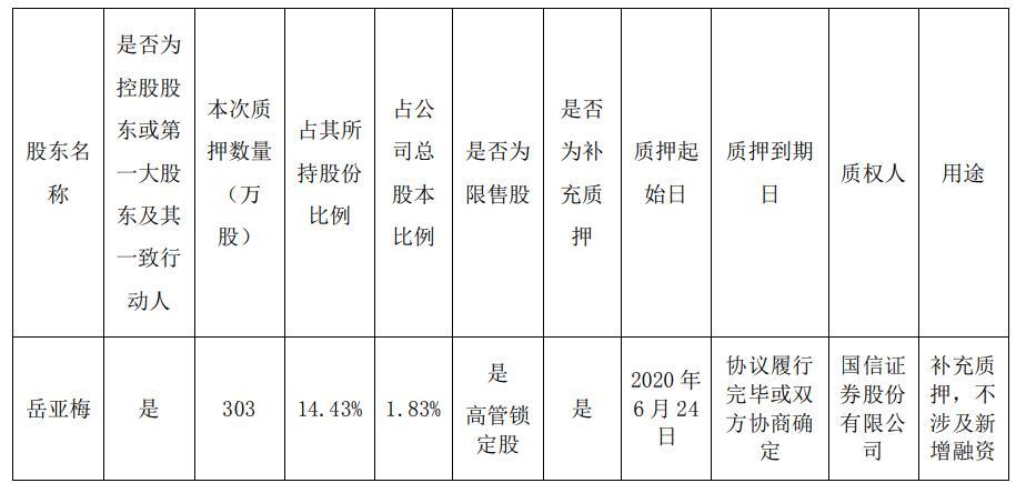 熙菱信息控股股东岳亚梅质押303万股 用于补充质押