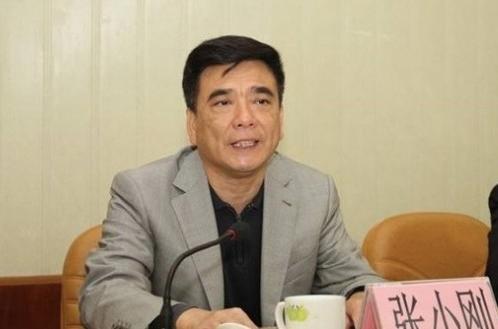 广东一厅官被开除党籍,安排民营企业主为其建造农庄供其享乐图片