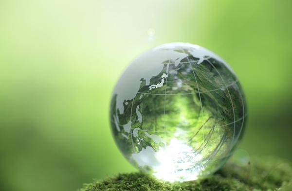 为全球可持续发展贡献中国智慧图片
