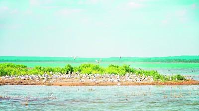 严明生态环境保护责任制度图片
