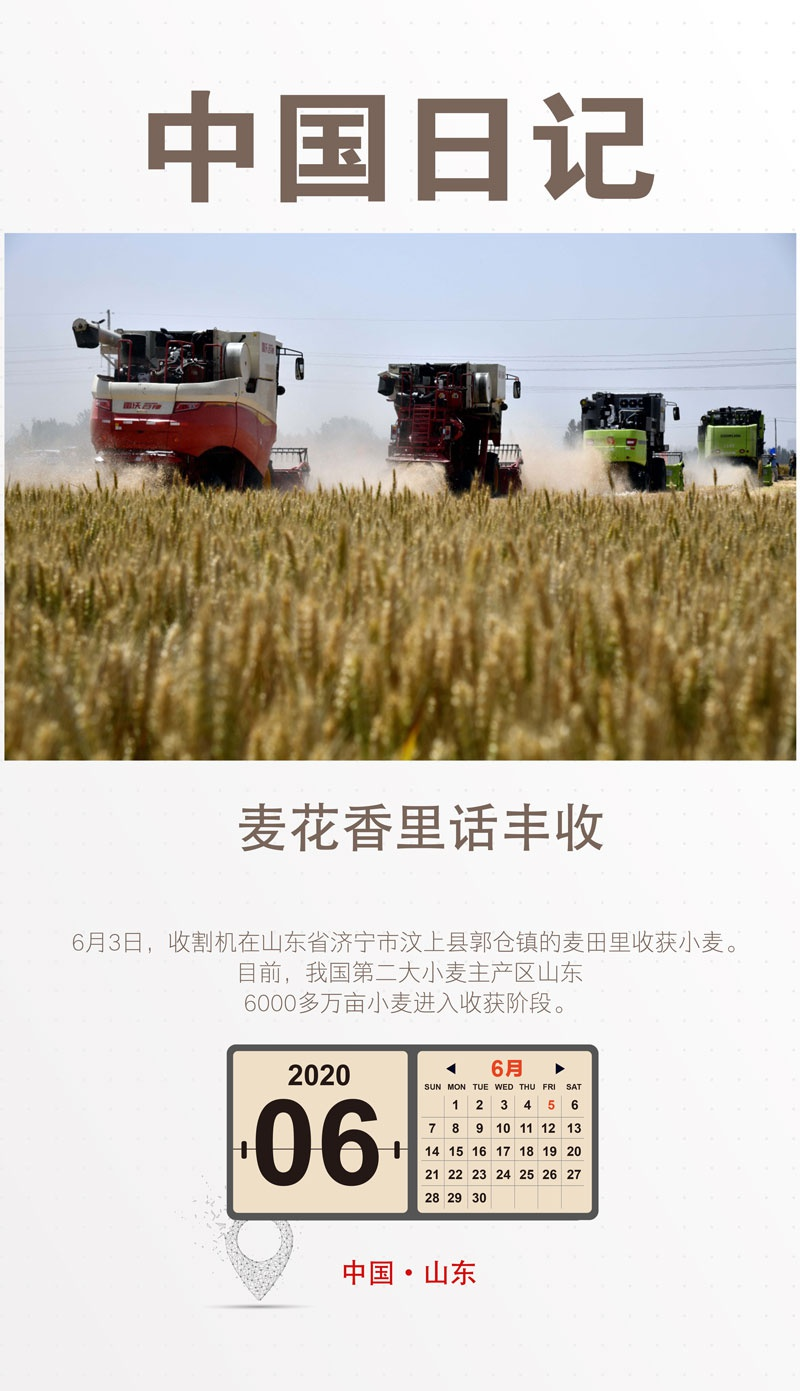 赢咖3中国日记6赢咖3月5日|麦花香里话丰收图片