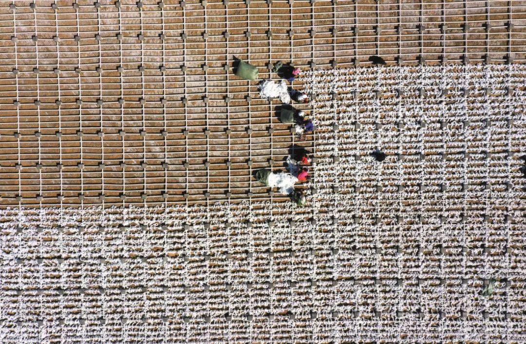 4月16日,宁夏石嘴山市星海湖湿地的生态修复现场。近年来,宁夏石嘴山市不断加强湖泊湿地生态环境综合治理,坚持以水生态修复为基础,以水质改善为核心,实施水系连通、水生植物种植、生态补水、岸线综合治理等项目。图/ 新华